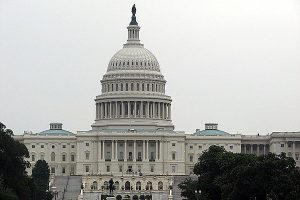 How About Some Common Sense Rules for Serving in Congress?