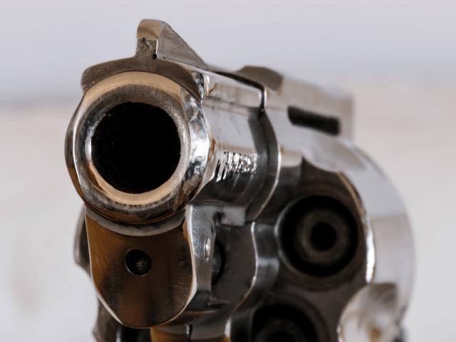gun 11